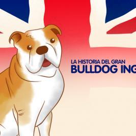 La historia del gran bulldog inglés