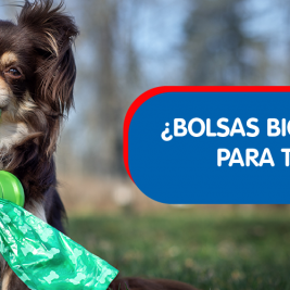 ¿Bolsas biodegradables para tu perro?