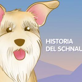 Historia del schnauzer