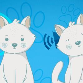 Sordera en gatos blancos