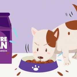 3 Tips para que tu perro coma despacio