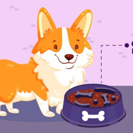 Una solución para perros ansiosos